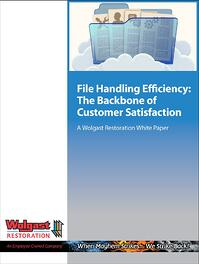 WR_File_Handling_Efficiency_Cover